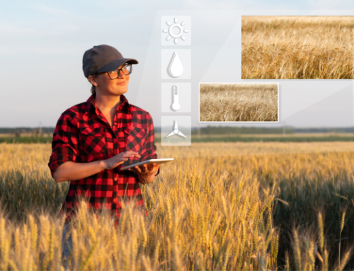 ARTICLE |  The new CAP and the digital transformation of agriculture