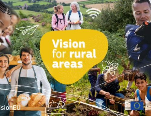 NEWS | First results from the EC's public consultation on the Long-Term Vision for Rural Areas
