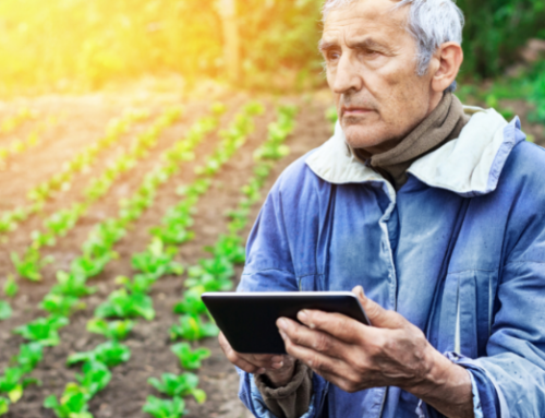 NEWS | A Socio-Cyber-Physical System framework in digital transformation of agriculture and rural areas