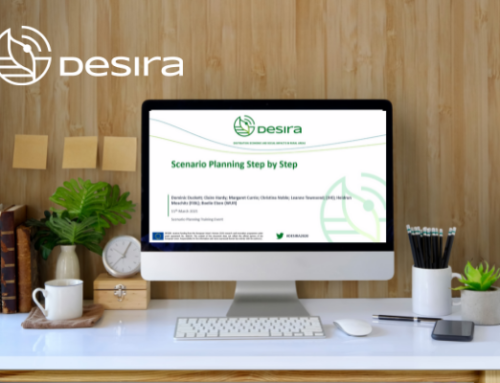 NEWS | Training sessions for DESIRA partners, what's next?