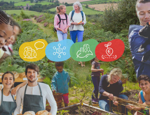 ARTICLE | Digitalisation and the communication on the Long-Term Vision for Rural Areas